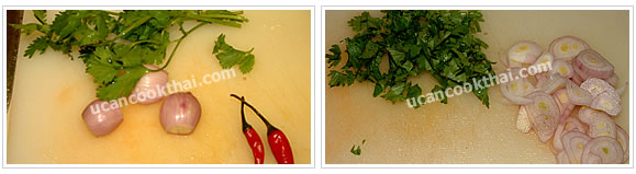 Preparation for spicy apple salad: Prepare vegetables and herb