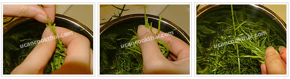 Preparation for Fried Cha-om with Egg: No.1 Pull down cha-om leaves from stem
