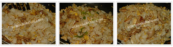 Preparation for Stir-fried Wide Rice Noodles with Chicken: No.9 Stir-fry to mix well, add sliced green onion, stri-fry quickly and remove from heat
