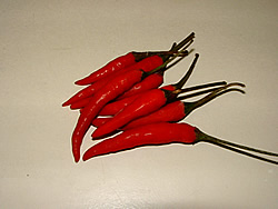 Fresh chillie, hot and spicy