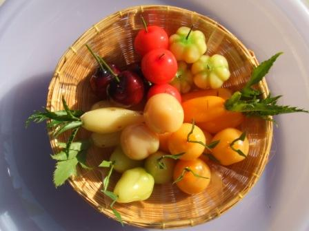 See Ms. Rudee Tangtirachai Full Size Picture in a new window
